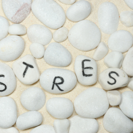 The Things You May Not Know about Stress