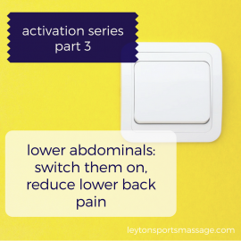 Why & How to Activate Your Lower Abdominals (activation post #3)